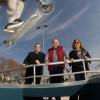 Nou skate park a Sant Andreu
