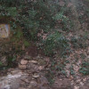 Castellví de Rosanes redescobrirà camins del seu entorn forestal