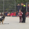 La unitat canina de la policia local realitzarà xerrades i demostracions als centres educatius de la ciutat
